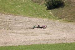 Landwirt dreht Heu in Puster-Tal, Österreich Lizenzfreie Stockbilder