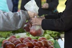Landwirt-Erwerb am freien Markt lizenzfreie stockbilder