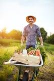 Landwirt im Garten mit Schubkarre lizenzfreies stockfoto
