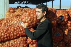 Landwirt im landwirtschaftlichen Lager Stockbild