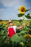 Landwirt im Sonnenblumenfeld Lizenzfreies Stockbild