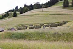 Landwirt ist trocknendes Heu in Gailtal, Österreich Stockfoto