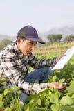 Landwirt Man Lizenzfreies Stockbild