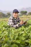 Landwirt Man Stockbilder