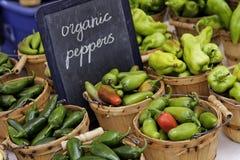 Landwirt-Markt Stockfotografie