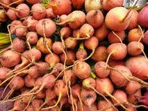 Landwirt-Markt verkauft goldene rote Rüben Stockfotos