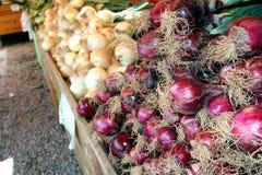 Landwirt-Markt-Zwiebel-Körbe Lizenzfreies Stockfoto