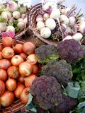 Landwirt-Marktbrokkoli, -zwiebeln und -rüben Stockfotografie