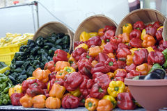 Landwirt-Marktgrüner Pfeffer Stockbilder