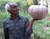 Landwirt mit einem großen Kürbis Lizenzfreies Stockbild