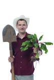 Landwirt mit einer Schaufel hält rote Rüben mit grünen Oberteilen Lizenzfreies Stockbild