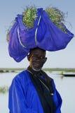 Landwirt mit Ernte in Mali Lizenzfreie Stockbilder
