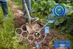 Landwirt mit grabendem Gartenbett oder -bauernhof der Schaufel Lizenzfreies Stockfoto