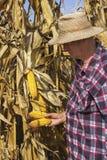 Landwirt mit Mais in seiner Hand Lizenzfreies Stockbild