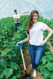 Landwirt mit Schaufel lächelnd direkt an der Kamera Stockfotografie