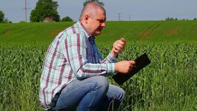 Landwirt nahe dem Feld Lizenzfreies Stockfoto