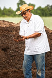 Landwirt Portrait Stockfotografie