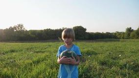 Landwirt ` s Sohn, der Wassermelonenernte am Feld des Biohofs erntet stock video footage