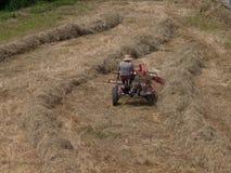 Landwirt schneidet ein Weizenfeld stockfoto