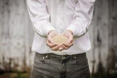 Landwirt-Showing Animal Dry-Lebensmittel lizenzfreie stockbilder