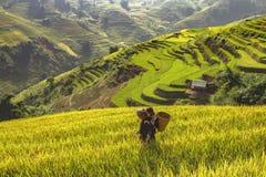 Landwirt und Tochter, die herausgehen, morgens zu tun, das Vietname Lizenzfreie Stockfotos