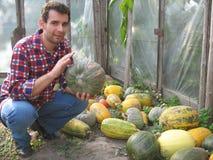 Landwirt und Zucchini stockbild