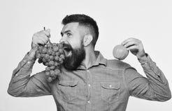 Landwirt zeigt Ernte Weinproduktion und Herbstfruchtkonzept Lizenzfreie Stockbilder