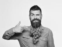 Landwirt zeigt sein Ernteweinproduktions- und -herbstkonzept Lizenzfreies Stockfoto