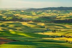 Landwirtbauernhof in der Landschaft in Palouse Lizenzfreies Stockfoto