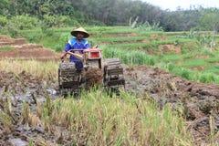 landwirte Stockbild