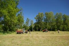 Landwirte auf dem Gebiet stockbilder