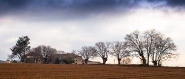 Landwirte bringen mit Nessel-Bäumen unter Lizenzfreie Stockfotos