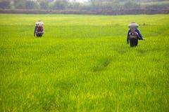 Landwirte, die Düngemittel ausbreiten    Lizenzfreies Stockbild