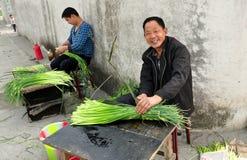 Pengzhou, China: Landwirte, die Knoblauch-Grüns zusammenrollen Stockfotografie