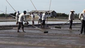 Landwirte, die Schlamm auf den Salzgebieten säubern stock video