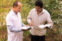 Landwirte sind Analyseanlagen Stockfoto