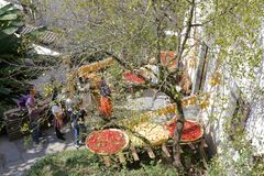 Landwirte trocknen Agrarprodukte im Bergdorf, luftgetrockneter Ziegelstein rgb lizenzfreies stockbild