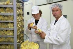 Landwirte und Baby-Huhn Lizenzfreie Stockfotografie