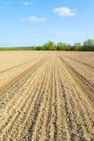 Landwirtfeld Stockfotos