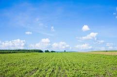 Landwirtfeld und -himmel Stockbild