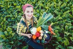 Landwirtfrau auf einem Gebiet, das organisches Gemüse anbietet lizenzfreie stockfotografie