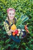 Landwirtfrau auf einem Gebiet, das organisches Gemüse anbietet stockfotografie