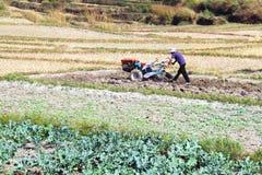 Landwirtgebrauchslandwirtschafts-Maschinen-Minitraktor, der Land vorbereitet Stockfotos