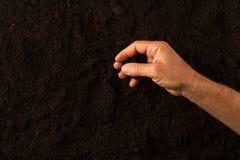 Landwirthand, die den Boden auf dunklem Hintergrund überprüft Lizenzfreies Stockfoto