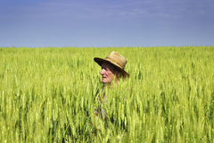 Landwirtkopf über seinem grünen Weizenfeld Stockfotos
