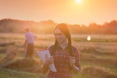 Landwirtmädchen auf dem Gebiet bei Sonnenuntergang Stockfotos