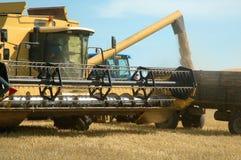 Landwirtschaft stockfoto