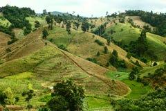 Landwirtschaft auf dem Berg Lizenzfreie Stockfotos
