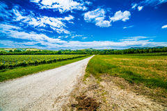 Landwirtschaft auf den Hügeln von Toskana und von Romagna Apennines stockbilder