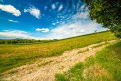 Landwirtschaft auf den Hügeln von Toskana und von Romagna Apennines stockfotos